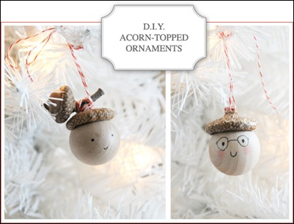 DIY-acorn