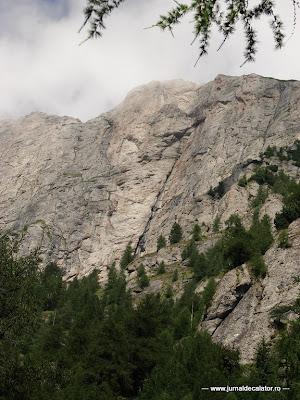 Valea Alba - Albisoara Branei (4).jpg