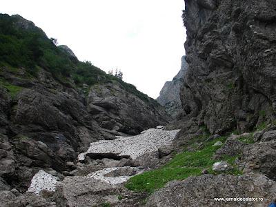 Valea Alba - Albisoara Branei (34).JPG