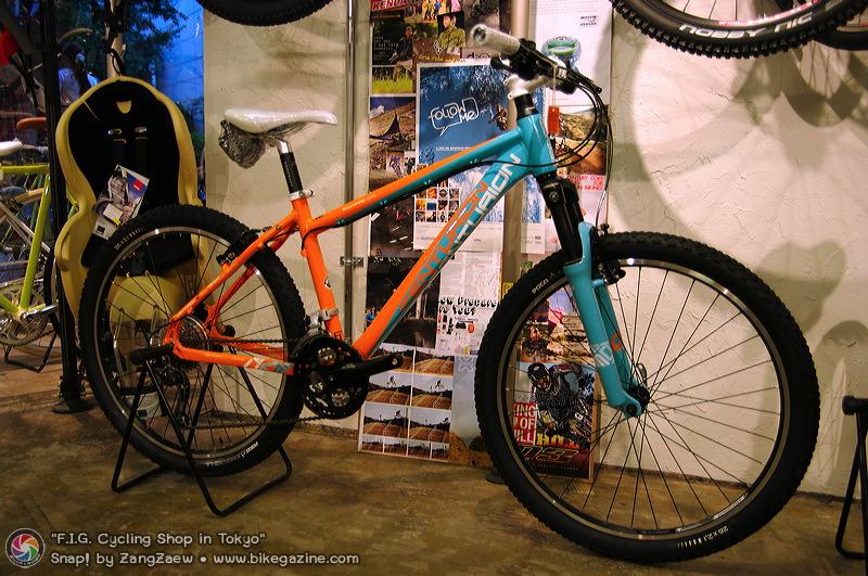 FIG Bike