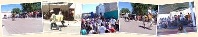 Ver Rally de Burros Los Molinos 2011