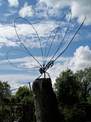 Dragon Fly - by Alan Jack