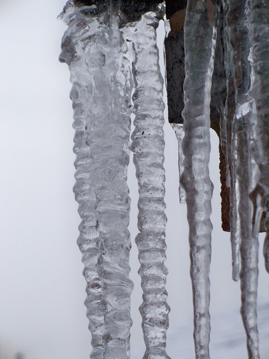 Icicle family 3