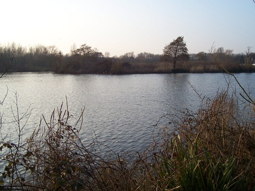 The lake in early evening - March