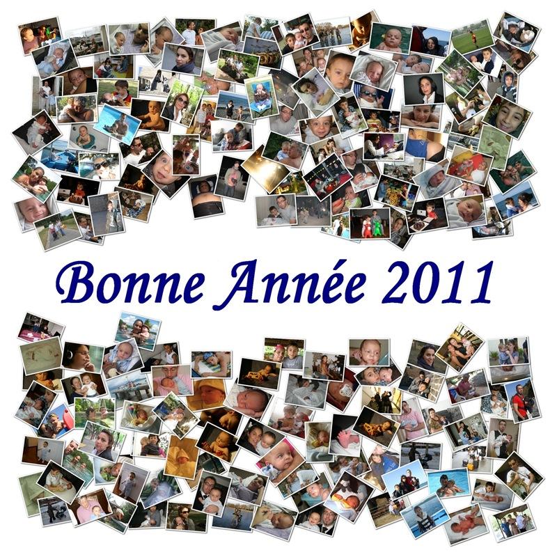 Bonne Annee 2011 v3