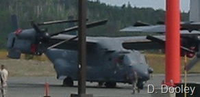 Osprey cropped