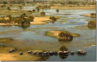 delta-del-okavango-botswana