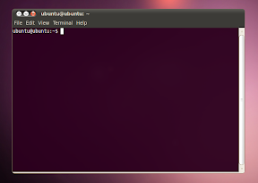 ubuntu 10.04 screenshot terminal radiance