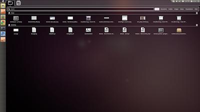 unity ubuntu 10.10 files