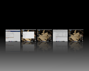 Compiz expo screenshot