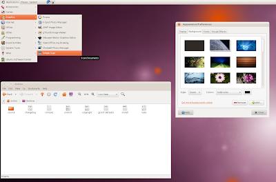 radiance ubuntu 10.10