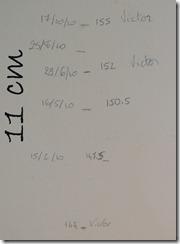 IMGP9131-1