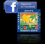 Grupo Tenerife Norte