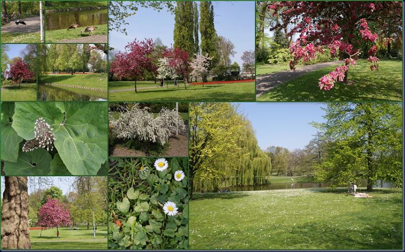 het park1