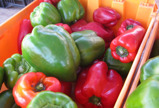 Red and Green Bell Peppers at the PB Farmers Market