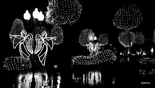2010December Lights