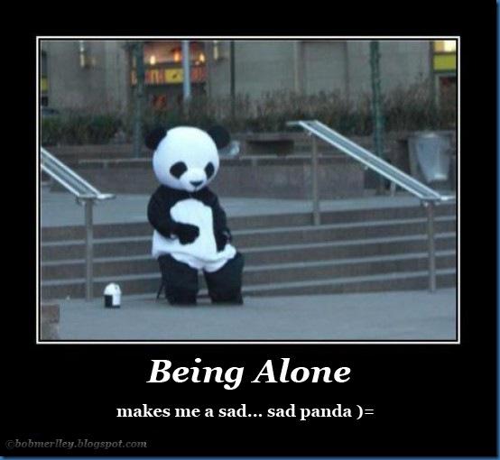 Sad panda alone