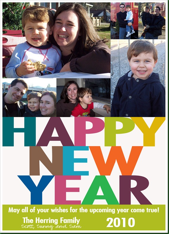New Year's card 2010