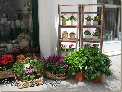 Ciao Amalfi Coast Blog Florist Anacapri