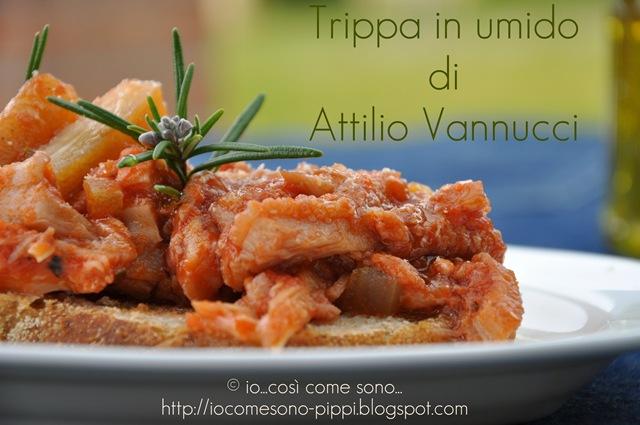 Trippa in umido di Attilio Vannucci