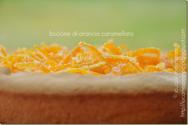 Crosta alla crema di ricotta e cocco  al profumo di arancia4