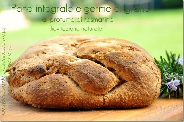 Pane integrale e germe di grano al profumo di rosmarino (lievitazione naturale)