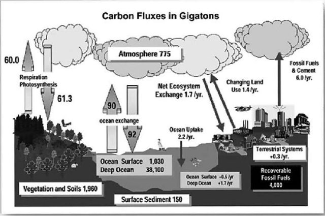 Carbon sequestration options.