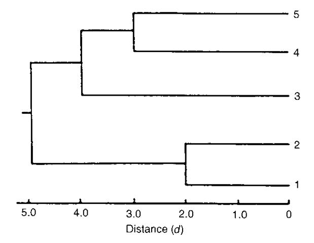 A dendrogram for the example matrix.
