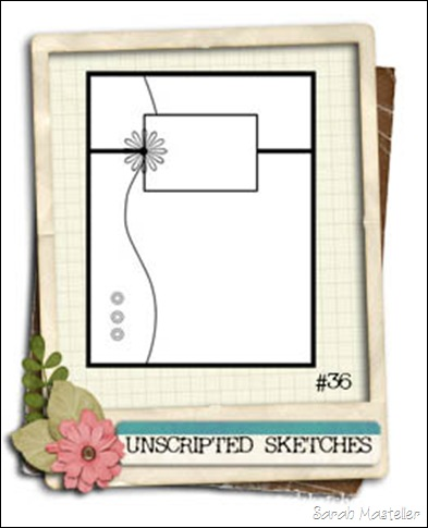 SK sketch 9 US sketch 36