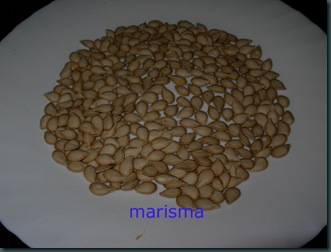 pipas de calabaza1
