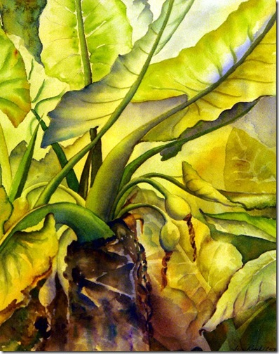 3rd Place - Under the Leaves - Sue Roach(2)