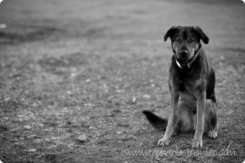 LyndenPhotographer-102