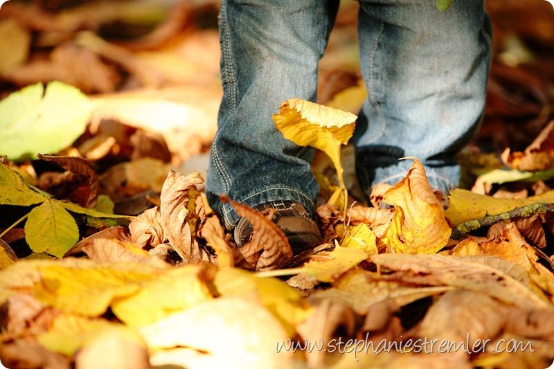 LyndenFamilyPhotographerF11-1-09Colby-104