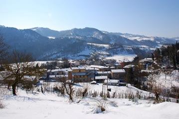 7-Panorama