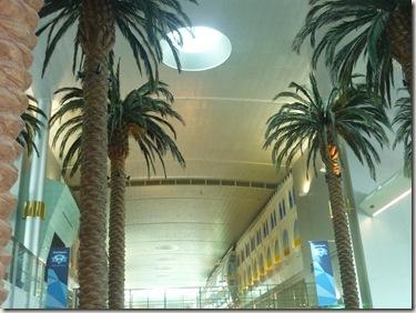 Dubai airport (11)