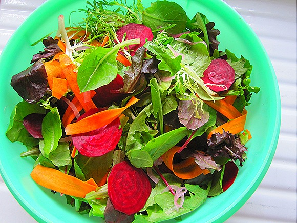 Mixed Greens Salad with Carrots, Beets & Pickled Onions