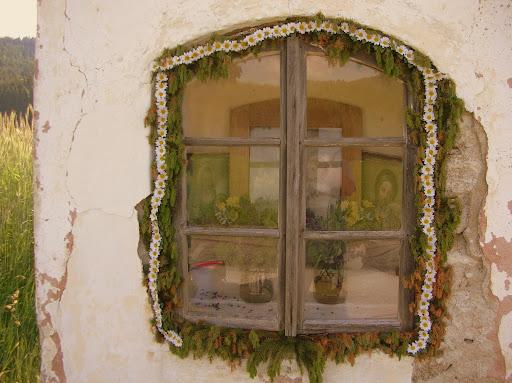 Prozori koji govore Img01783