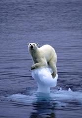 cambio climatico - foto
