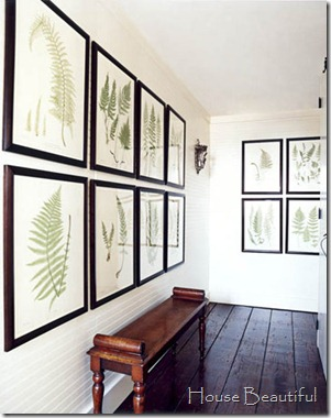 house beautiful botanical prints