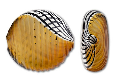 Murano Blown Glass Amber and Black Swirl Bead