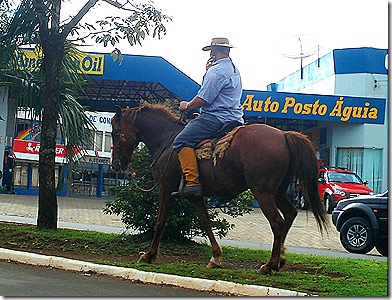 Cavalo e celular