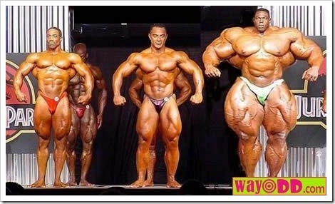 Funny fitness pictures | Extreme Bodybuilding.