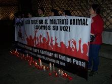manifestación 2011 (2)