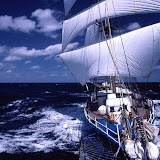 「帆船海星」宮古島から台湾、中国への写真UPしました。1アルバム!