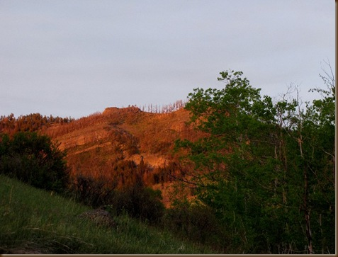 Red mtns