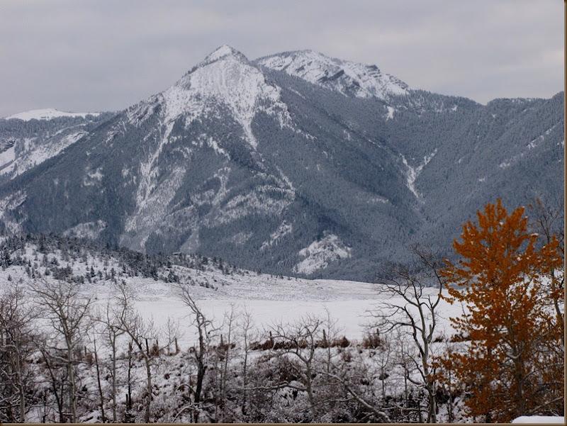 Boone Mtn November