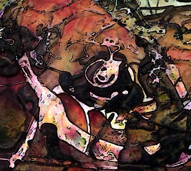 30 x 24 detail Alt2 Oct 1 2009 032