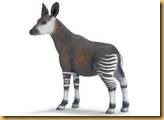 th_okapi