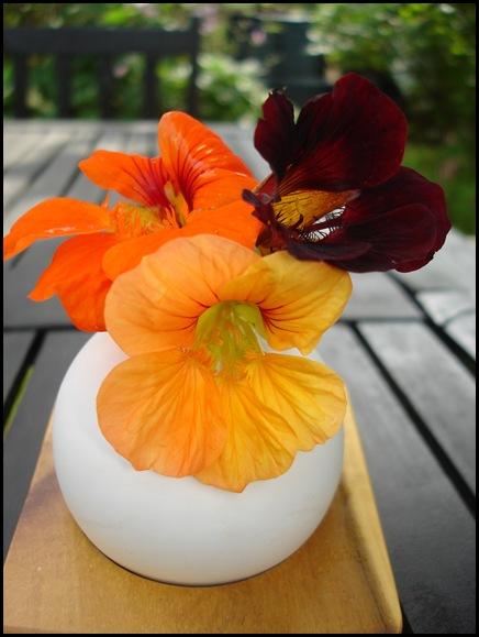 Blommor 010