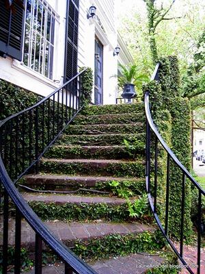 A Savannah stairway